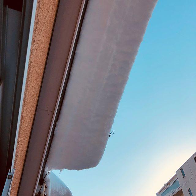 ベランダの物置に積もった雪の量がハンパない。そして、屋根からはみ出してる雪がヤバすぎる